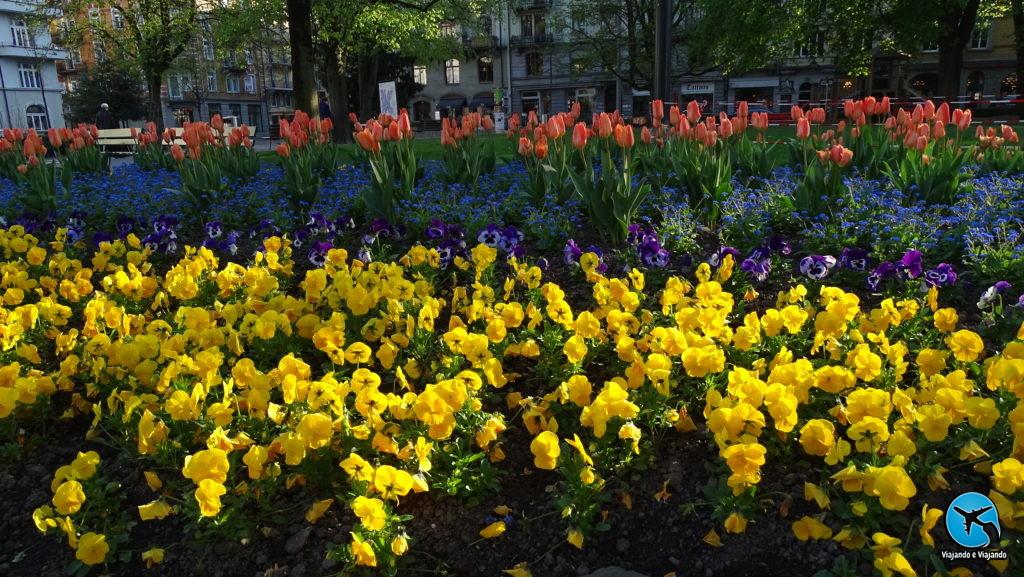 Flores primavera em Lucerna na Suíça