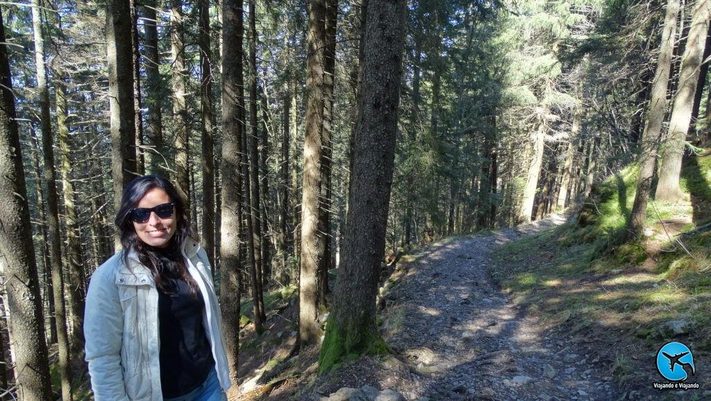 Trilha trail no Monte Pilatus em Lucerna na Suíça Luzern Switzerland