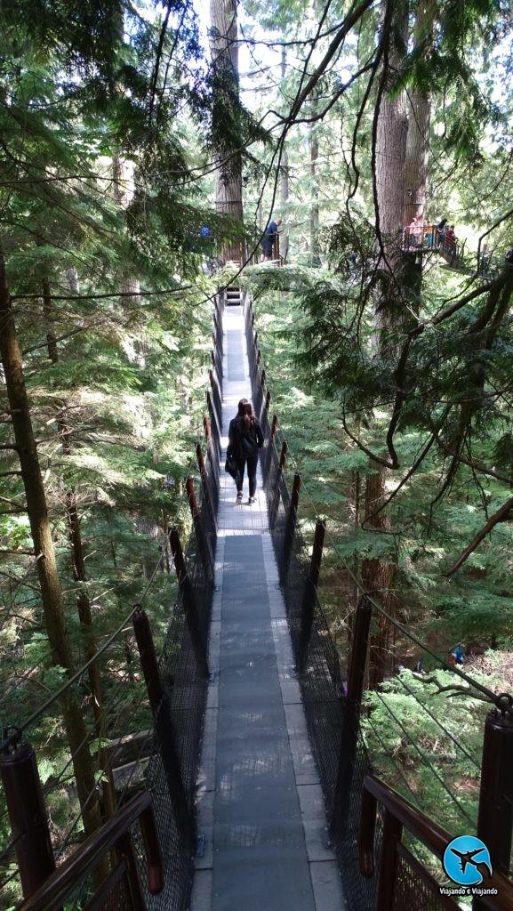 Tree top adventure in Capilano Suspension Bridge Park in Vancouver