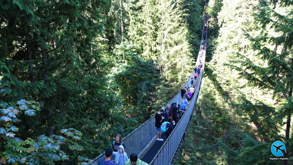 Capilano Suspension Bridge Park in Vancouver
